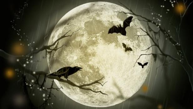 halloween-72939-340.jpg