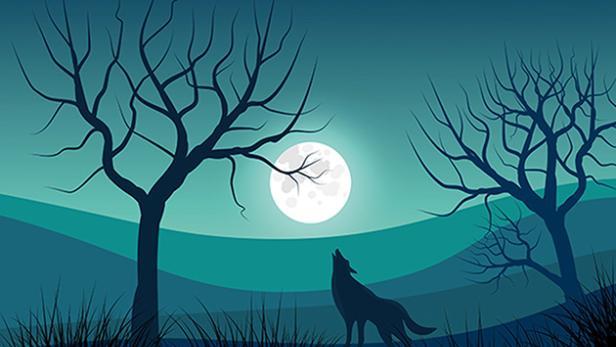 peter-und-der-wolf-4295625-630x420-pixabay-com.jpg
